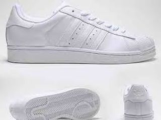 superstar adidas blancas